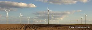 Energiewende / Windkraft